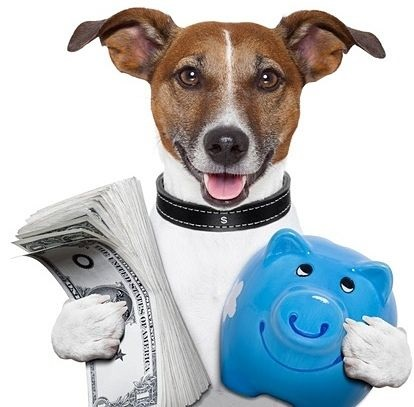 Investing on Margin - The Margin Lending Process; picture of a dog holding money and a piggy bank just like a real person would
